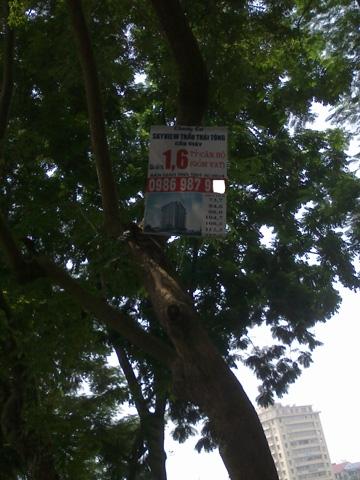 quảng cáo cột điện