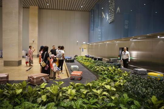Vietnam Airlines khai thác nhà ga mới hình tổ yến tại sân bay Cam Ranh - Ảnh 2.