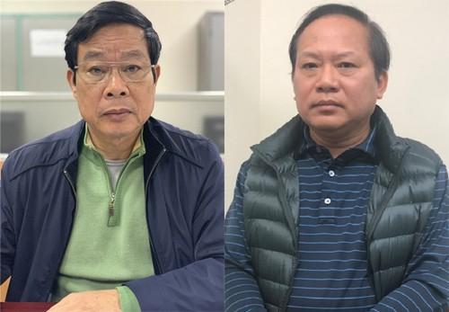 Ông Phạm Nhật Vũ bị bắt về tội Đưa hối lộ - Ảnh 4.