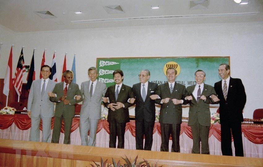 25 nam Viet Nam gia nhap ASEAN anh 8