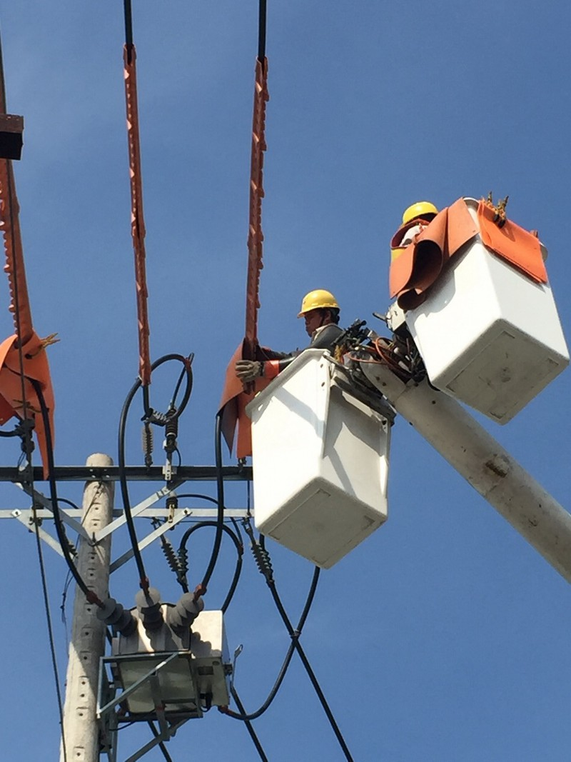 TP.HCM: Tự động hóa lưới điện vì một thành phố thông minh      - ảnh 2