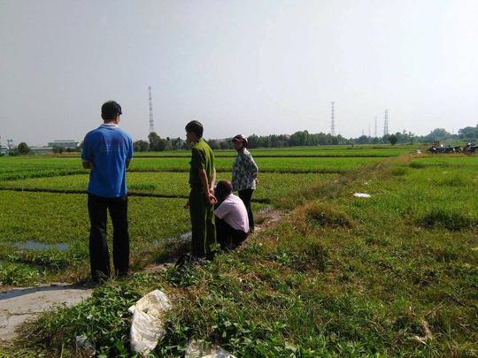 Cơ quan chức năng khuyên người dân không sử dụng nhớt thải để tưới lên rau muống