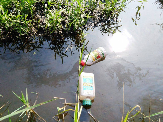 Các chai nhớt, hóa chất được tìm thấy trên ruộng rau muống ở Củ Chi.