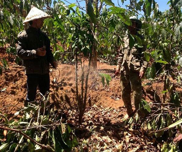 Ya Suy trong hình ảnh một anh nông dân với trang phục lao động đơn giản, đội nón lá để che đi cái nắng đang khá gay gắt nhưng vẫn rất tập trung làm việc