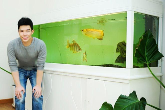 Hồ cá 'khủng' của Nathan Lee. Sở thích nuôi cá rồng của Nathan Lee đến từ bố anh, một trong những người chơi cá rồng đầu tiên tại Hà Nội. Nam ca sĩ kiên quyết không tiết lộ giá của chú cá vàng tên Goldie nhưng theo tìm hiểu thị trường thì chú cá này giá không dưới 10 ngàn USD.Nathan Lee tự...