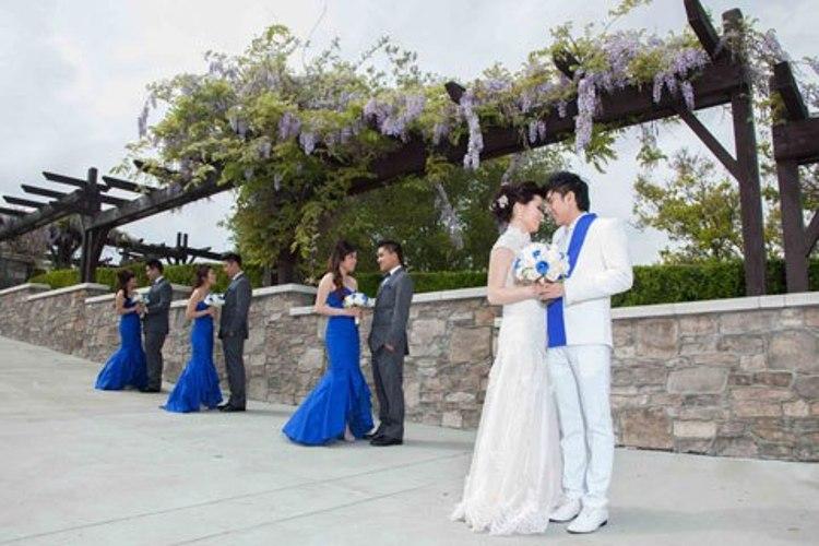 Đám cưới Đan Trường