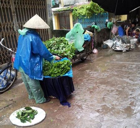 thị trường, thực phẩm