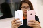 iPhone 7 hết hot: Giảm giá sâu, khuyến mãi lớn vẫn vắng khách