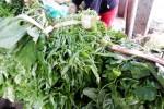 Mưa lũ kéo dài, rau xanh tăng giá
