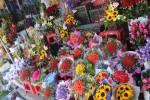 Cận ngày 8/3, hoa tươi Đà Lạt tăng giá gấp 3 lần ngày thường