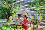 Trái cây Thái Lan, Trung Quốc lại ồ ạt vào Việt Nam