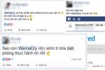 Nhiều người Việt tải mã độc WannaCry về để nghịch