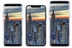 Samsung sản xuất 10 triệu màn hình OLED mỗi tháng cho iPhone 8