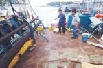 Một số ngư dân xin rút đầu tư tàu vỏ thép