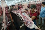 Trung Quốc mua heo trở lại, giá vẫn rẻ
