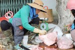 Kon Tum: Dân tự mổ heo đem bán để 'tự giải cứu'