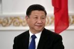 """Kinh tế Trung Quốc lo lắng vì """"thiên nga đen"""" và """"tê giác xám"""""""