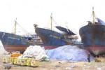 Sửa 17 tàu vỏ thép đắp chiếu: Quyết định nóng