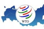 Nếu Nga chọn rời WTO, đó là hành động tự sát
