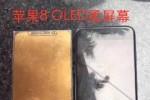 Trung Quốc muối mặt vì iPhone 8 xuất hiện sớm