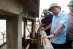 Thủ tướng khen Ninh Bình trắng đêm canh từng cm lũ, sáng suốt chưa xả tràn