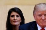 """Mỹ sẽ """"tự xử"""" Triều Tiên nếu Trung Quốc không hành động"""