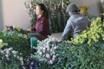 Hoa Tết Đà Lạt giá cao, rau rẻ