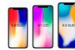 iPhone Xs Plus 6,5 inch sẽ có cả bản dùng SIM kép?