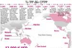 Ký kết CPTPP: Không nên chỉ nhìn vào 11 thị trường