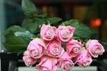 Một cành hồng cho ngày 8.3, giá chênh nhau đến 40 lần
