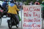 Bị cấm, đuông dừa Bến Tre vẫn bán ở vỉa hè Sài Gòn