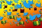 Twitter cũng bán thông tin người dùng cho Cambridge Analytica như Facebook