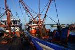 Philippines yêu cầu Trung Quốc chấm dứt tịch thu cá của ngư dân