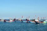 """Tìm giải pháp cấp bách gỡ """"thẻ vàng"""" của EC với hải sản xuất khẩu"""