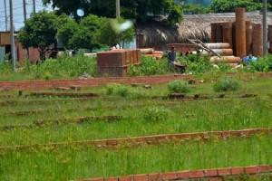 TP.HCM chặn sốt đất: Công khai quy hoạch để chặn cò đất thổi giá