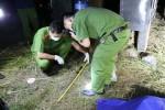 Nghi án người phụ nữ bị sát hại ở vùng ven TP.HCM