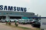 """Samsung Việt Nam lên tiếng về tin """"chuyển sản xuất sang Triều Tiên"""""""