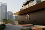Apple đang cân nhắc mở cửa hàng Apple Store tại Việt Nam?