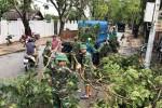 Dân Cần Giờ vẫn còn sững sờ về bão số 9