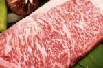 Doanh nghiệp đua nhau nuôi bò Nhật