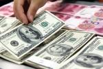 Ngày 11/5: USD thế giới lao dốc, trong nước tăng nhẹ