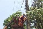 Lo quá tải, EVN kêu gọi người dân tiết kiệm điện