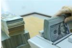 Tỷ giá USD/VND tăng nhanh, Ngân hàng Nhà nước nói gì?