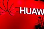 Hãng lắp ráp điện thoại lớn nhất cho Huawei tạm ngừng sản xuất vô thời hạn