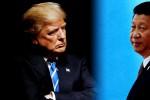 Hơn 500 doanh nghiệp, hiệp hội Mỹ kêu gọi Tổng thống Mỹ ngừng tăng thuế với hàng Trung Quốc