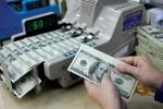Ngày 17/6: Tỷ giá USD/VND tăng trở lại
