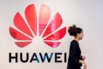 """Phát hiện chiếc """"đuôi thằn lằn"""" của Huawei đang ẩn thân ở Mỹ"""