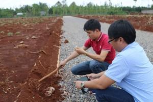 """Nhiều dự án """"ma"""" Alibaba dùng đất, đá che lấp đường làm trái phép để """"ngụy"""""""