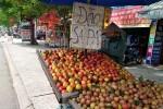 Đào Trung Quốc giá rẻ đổ về Sài Gòn