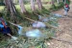 Thảm sát bộ lạc ở Papua New Guinea, 15 phụ nữ và trẻ bị phân xác